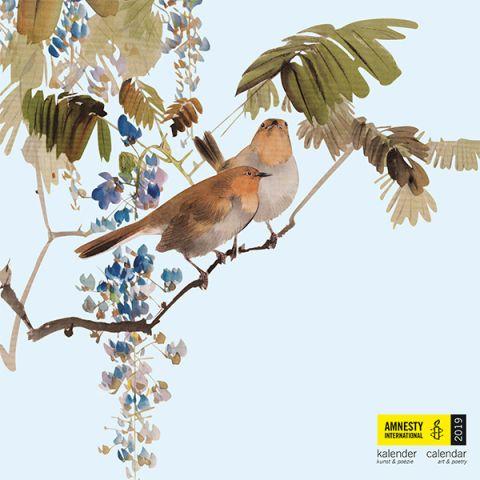 Amnesty Kalender 2019